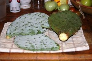 Cactus paddles small