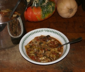 Venison and Cabbage stew
